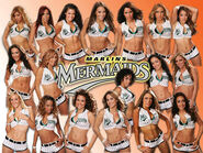 2006 Marlins Mermaids