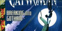 Catwoman (Volume 2) Issue 75