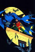 Robin Tim Drake 0002
