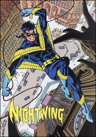 File:Nightwing profile whos90s.jpg