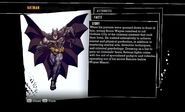 Batman biography Arkham Asylum