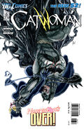 Catwoman Vol 4-6 Cover-1