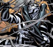 Zebra-Man BMV