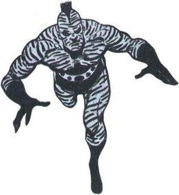 Zebra-Man 01