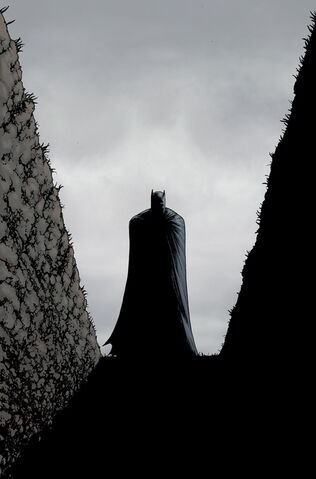File:Batman Incorporated Vol 2-9 Cover-1 Teaser.jpg