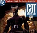 Catwoman (Volume 3) Issue 25