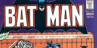 Batman Issue 256