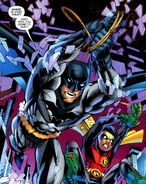 1615610-batman and robin 19 002