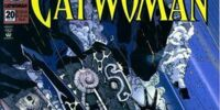 Catwoman (Volume 2) Issue 20