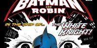Batman and Robin (Volume 1) Issue 22