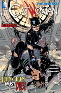 Catwoman Vol 4-21 Cover-1