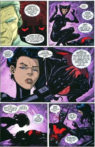 File:Catwoman beyond5.jpg