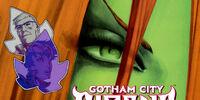 Gotham City Sirens Issue 8