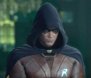 Robin-character