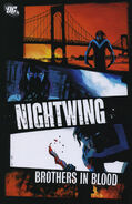 Nightwing - Brothers in Blood
