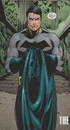 Batman-The All-Over