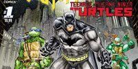 Batman/Teenage Mutant Ninja Turtles Issue 1