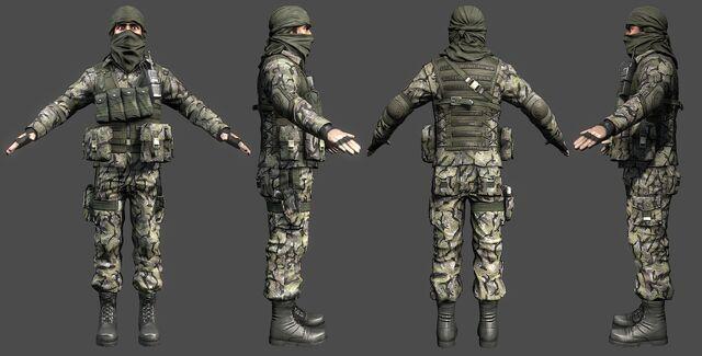 File:PLR Infantry.jpg