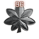 File:Rank 96.png