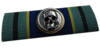 BF4 Avenger Ribbon