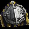 Conquest Medal