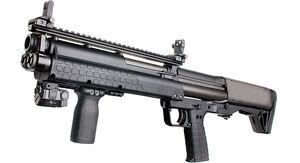 KSG12 IRL