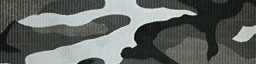 File:BF4 Urban Airborne Camo.png