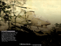 Thumbnail for version as of 15:27, April 13, 2011