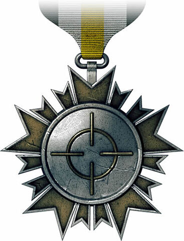 File:Accuracy Medal.jpg