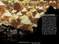 Thumbnail for version as of 13:22, September 4, 2011