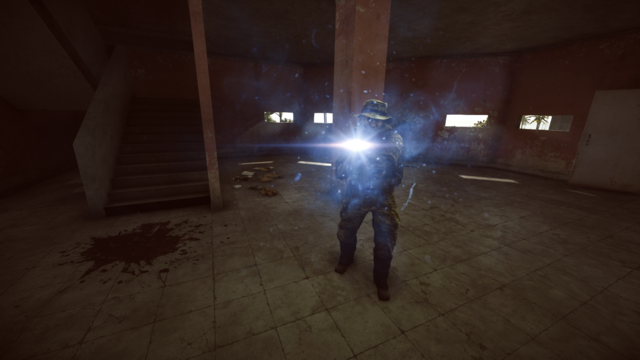 File:BF4 Flashlight glare.png