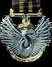 Scavenger medal