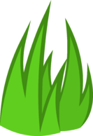 Grassy (better)