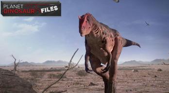Planet Dinosaur Files Poster