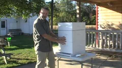 Getting Started In Beekeeping Equipment