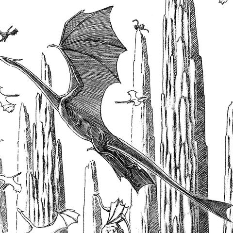Canyon Dragon