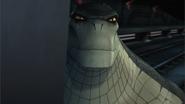 Croc's smile