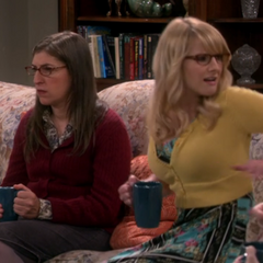 Bernadette screaming when she sees Sheldon in the window.