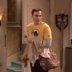 Sheldon returns to the apartment that he shares with his