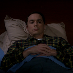 Sheldon worried about being step-brothers.