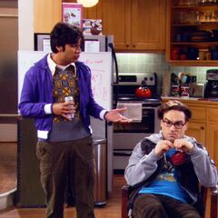Raj explains Karma in regards to Leonard's actions.  Leonard feels terrible.