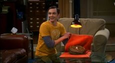 Sheldon with the egg