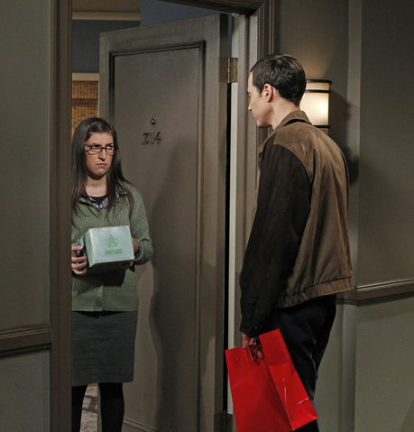 File:S6EP07 - Sheldon and Amy.png