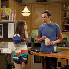 Sheldon and Amy discuss the progress of their gossip experiment