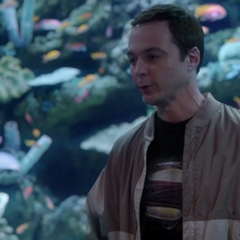 Sheldon and Amy visiting the aquarium as friends.