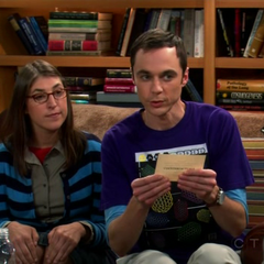 Sheldon and Amy playing Counterfactuals with Leonard.