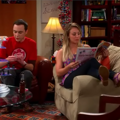 Penny and Sheldon hanging out together while missing Leonard.