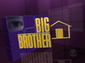 Bb11-usa-logo
