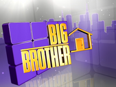 Big Brother 14 Logo