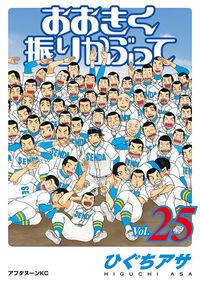 Vol25
